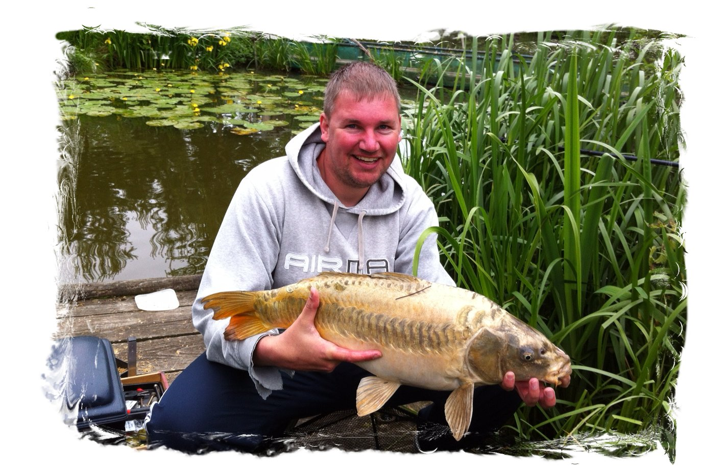 Mirror Carp (Ghost Linear) at Tetley Angling